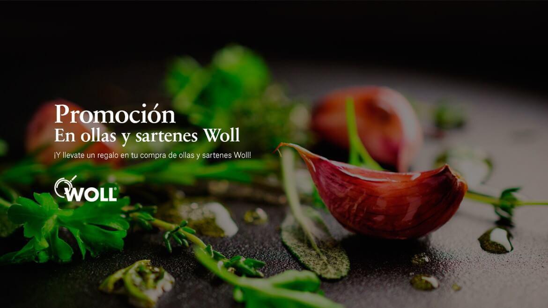 Sartenes y Ollas Woll